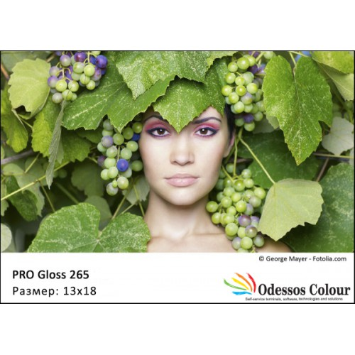 Фотохартия 13x18 PRO GLOSS 265 гр. - 50 листа