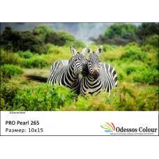 Фотохартия 10x15 PRO PEARL 265гр. - 50 листа