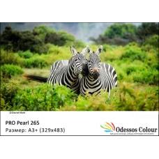 Фотохартия А3+ (329х483мм) - PRO PEARL 265 гр. - 50листа